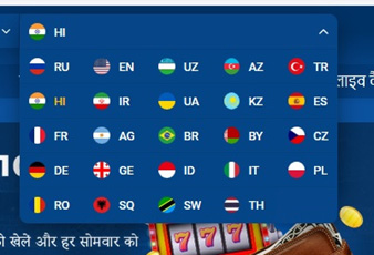 Picture 1. Choose language